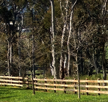 timberwood fences
